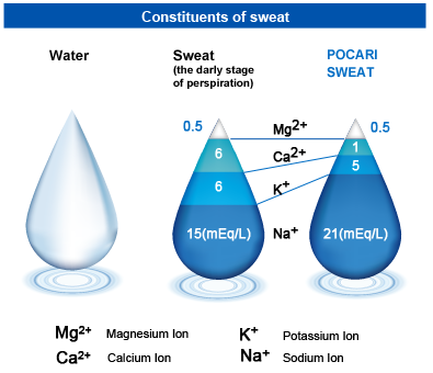 sweatcomposition